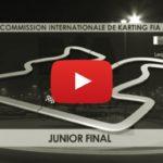 """La final """"OK-Junior"""" del Mundial de Karting CIK FIA 2016 en Barehin"""